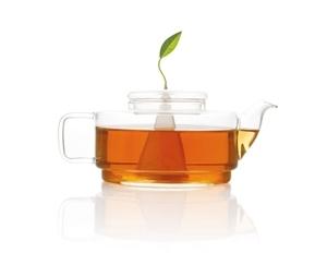 Sontu精緻玻璃茶壺 Tea Forte Sontu Teapot